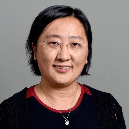 Teresa Wu, PhD